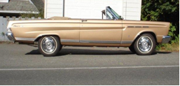Black - 1973 Comet convertible